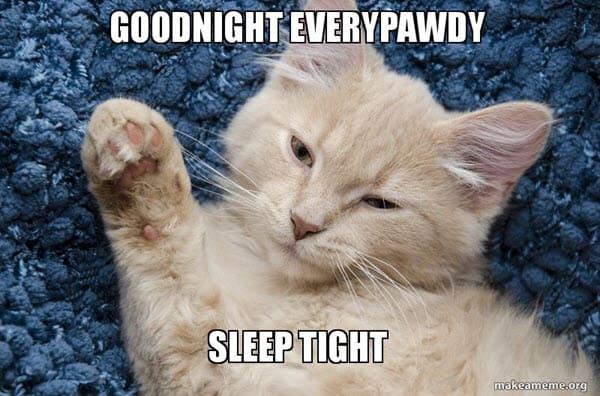 goodnight everypawdy meme