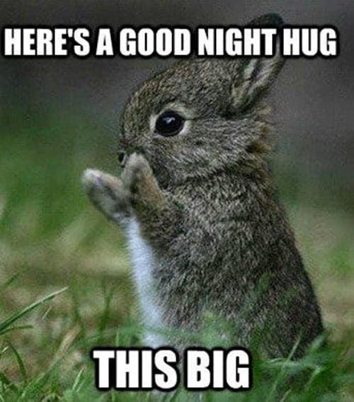 goodnight hug meme