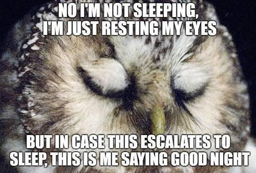 goodnight im not sleeping meme