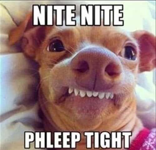 goodnight nite nite meme