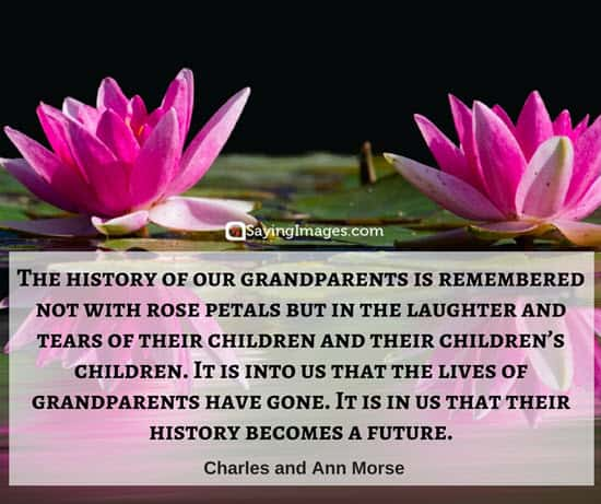 50 Great Happy Grandparents Day Quotes Sayingimagescom