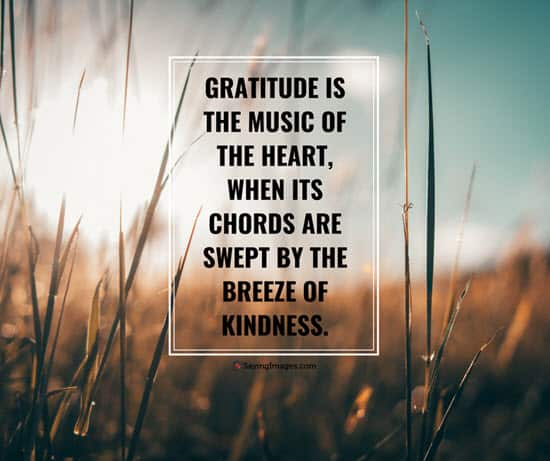 gratitude kindness quotes