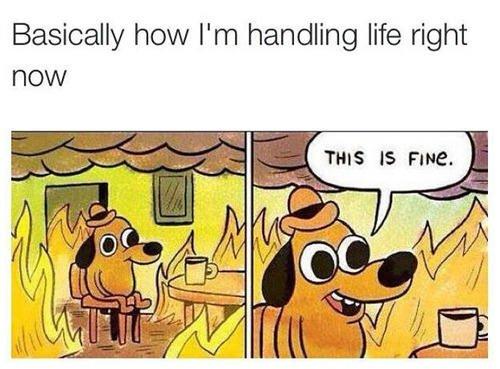 handling life meme