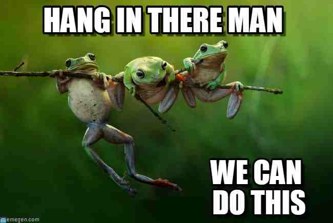 20 Hang In There Meme To Motivate You