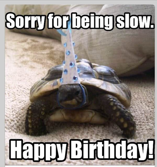 happy belated birthday being slow meme