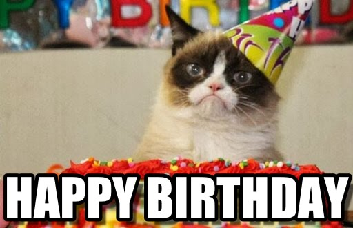 happy birthday cat meme 20 adorbs happy birthday cat memes sayingimages com