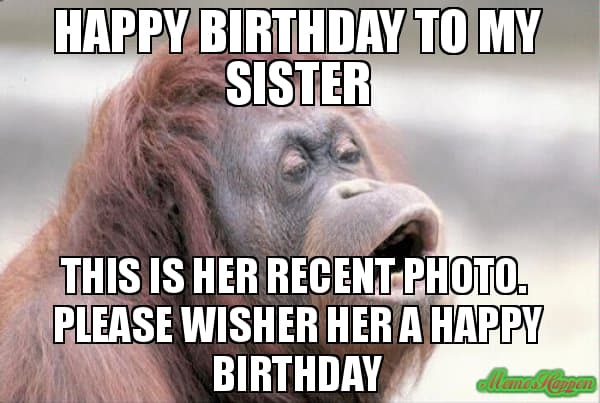 Funny Meme Sister : Hilarious birthday memes for your sister sayingimages