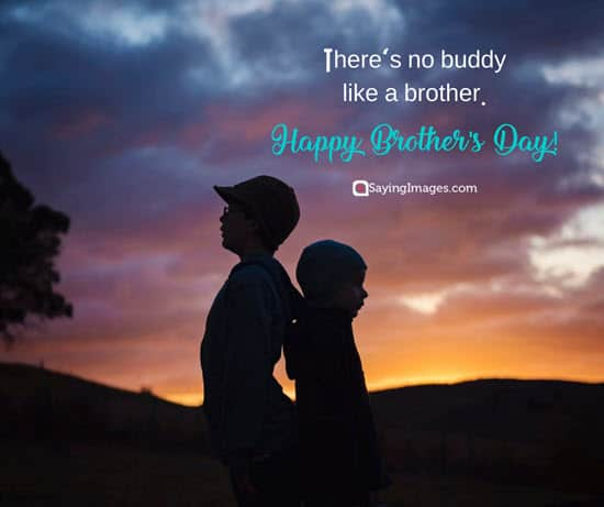happy brothers day wish