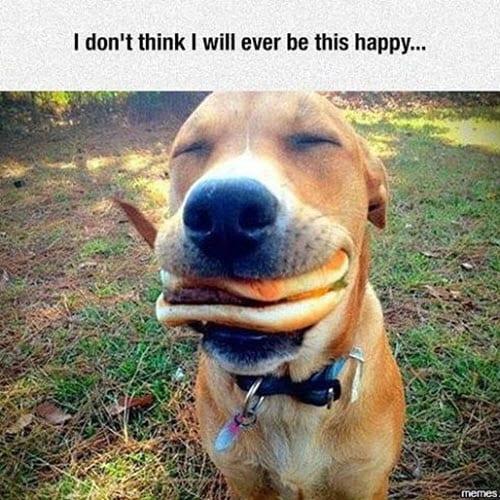 happy meme