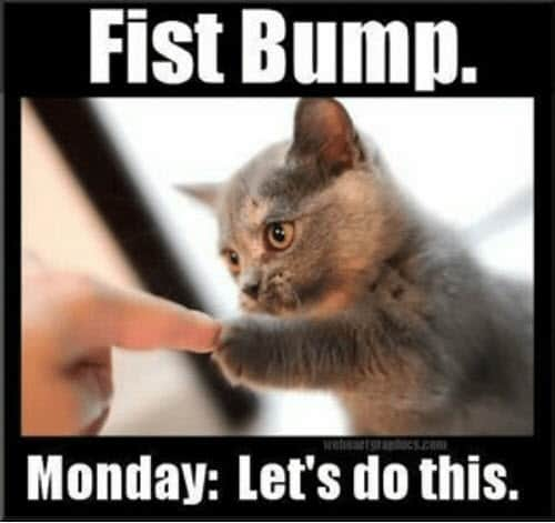 happy monday fist bump meme
