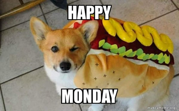 happy monday hotdog meme