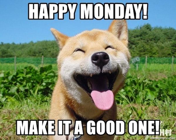 Happy Monday Meme Funny : Best memes to start monday the right way sayingimages