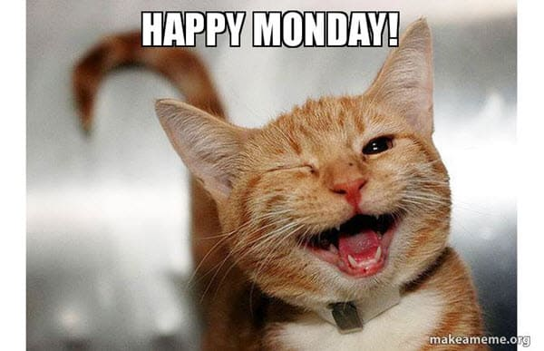happy monday wink meme