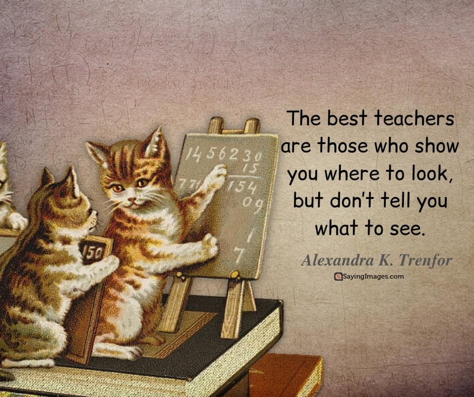 happy teachers day see quotes