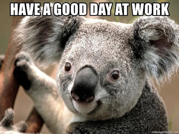 have a good day at work meme