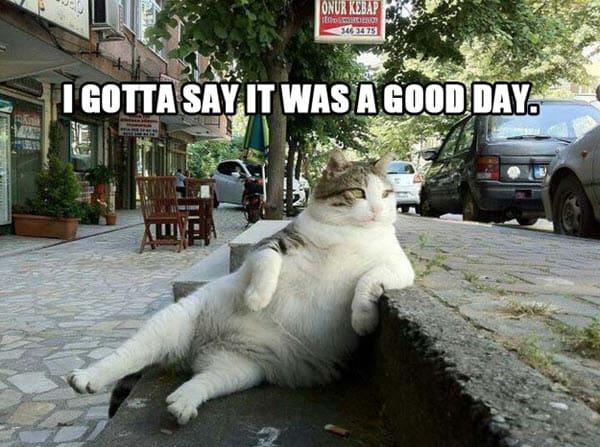 have a good day i gotta say meme