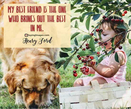 henry ford friendship quotes
