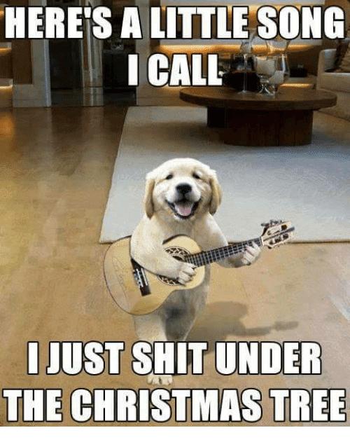 Dog Christmas Tree Meme.15 Christmas Song Memes To Make Your Holidays Extra Fun