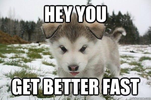 Soon meme dog