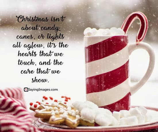 holiday season quote