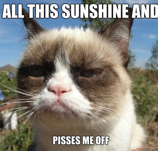 hot weather all this sunshine meme