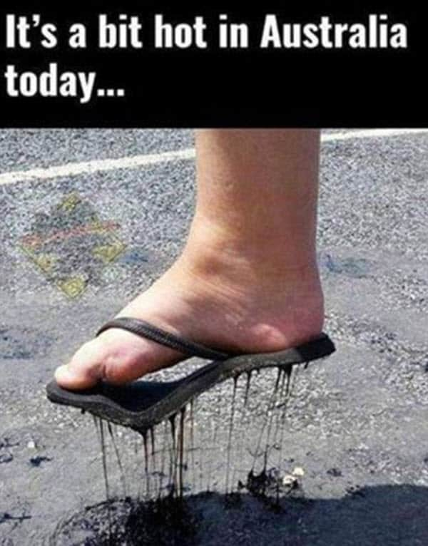 hot weather in australia meme