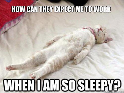 i am so sleepy meme