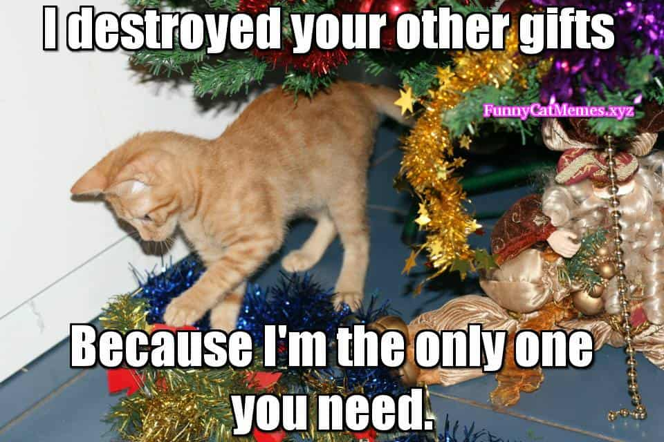 Funny Christmas Decorating Meme : Christmas memes that will surely make you excited