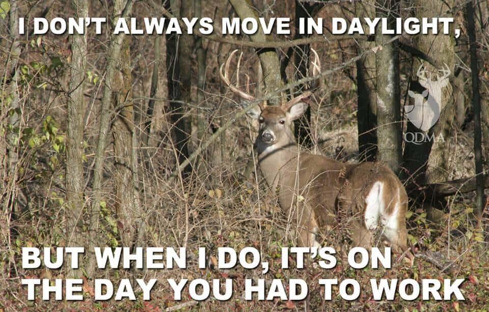 The 20 Best Deer Hunting Memes