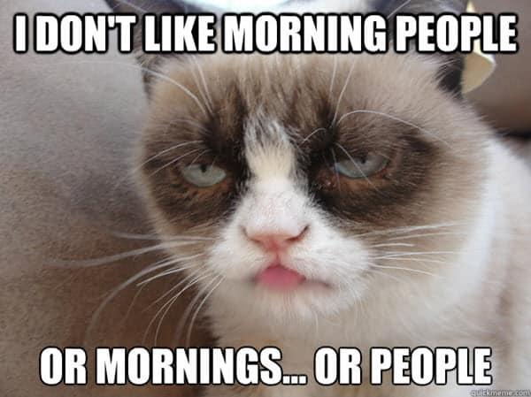 i hate morning people meme