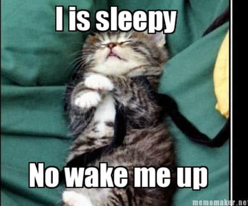 i is sleepy meme