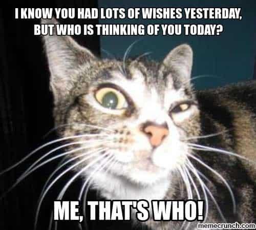 20 Best Happy Belated Birthday Memes Sayingimages Com