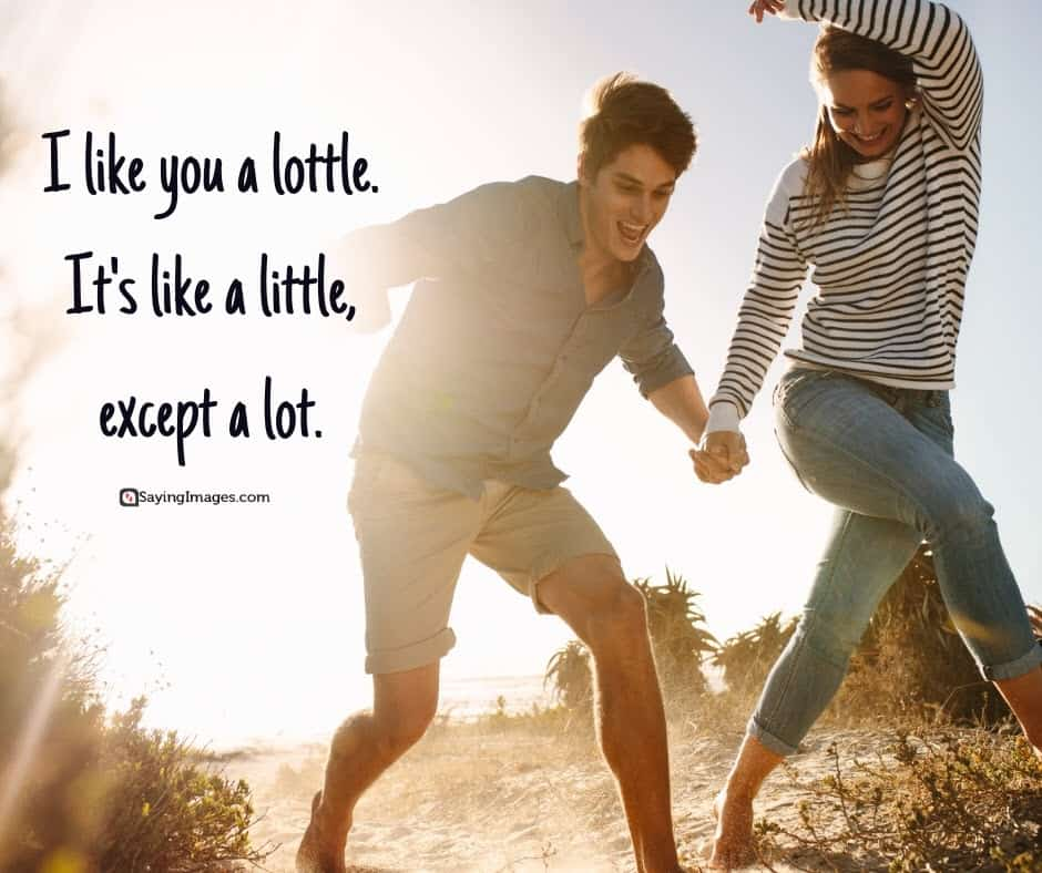 i like you lot quotes