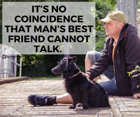 60 Dog Quotes For People Who Love Dogs SayingImages Amazing I Love My Dog Quotes
