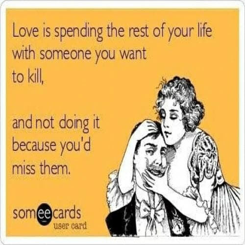 i love my husband ecard meme
