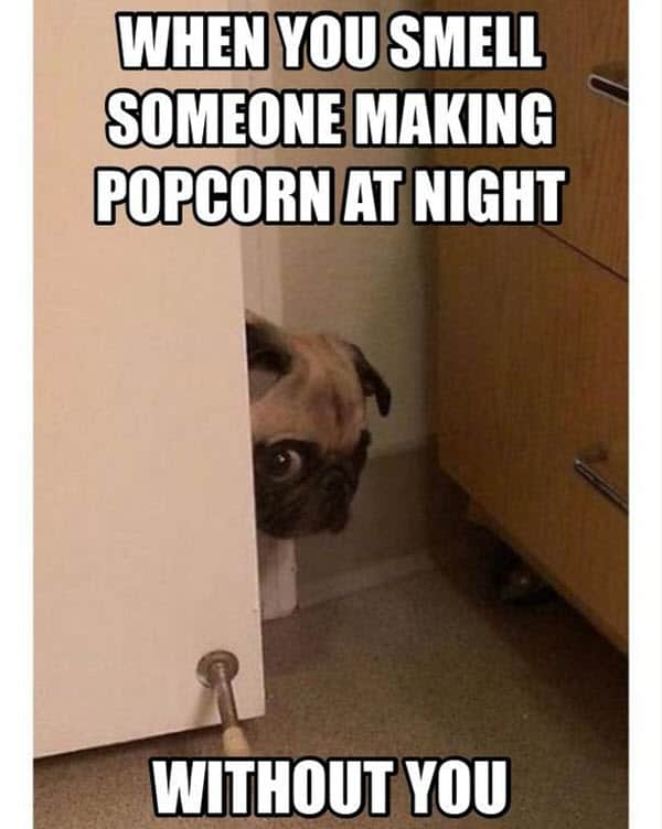 i love my husband smell popcorn meme