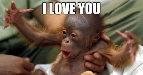 i love you this much meme