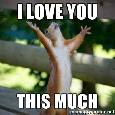 i love you this much meme 20 very sweet and funny i love you this much memes sayingimages com