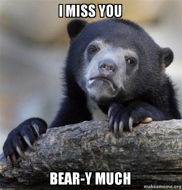 i miss you beary much memes