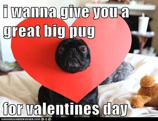 Itu0027s Valentineu0027s Day