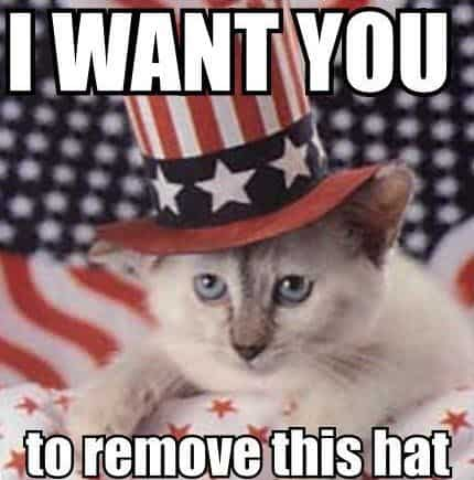 20 Funny 4th of July Memes For This Special Holiday ...