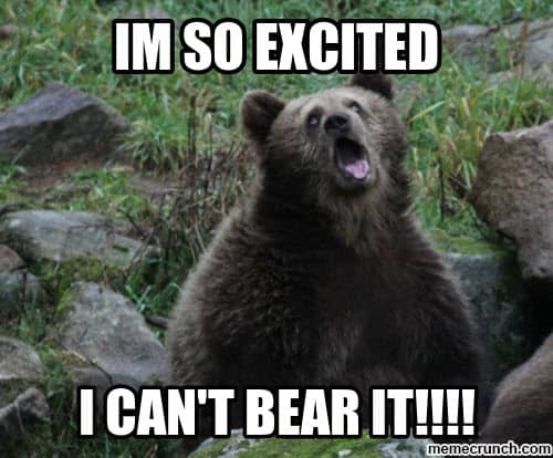 im so excited i cant bear it meme