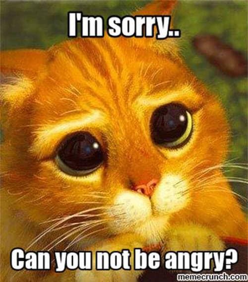im sorry angry meme