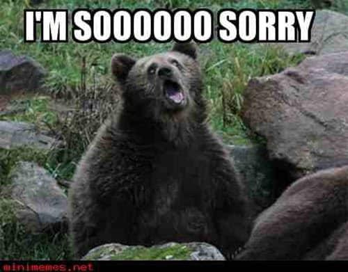 im sorry bear meme