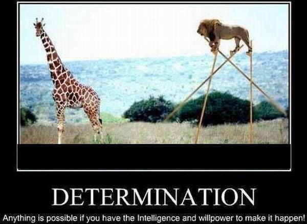 inspirational determination memes