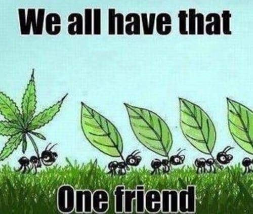inspirational one friend memes