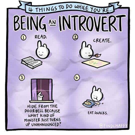 introvert being meme