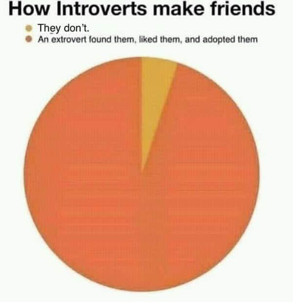 introvert make friends meme