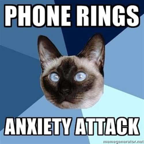 introvert phone rings meme