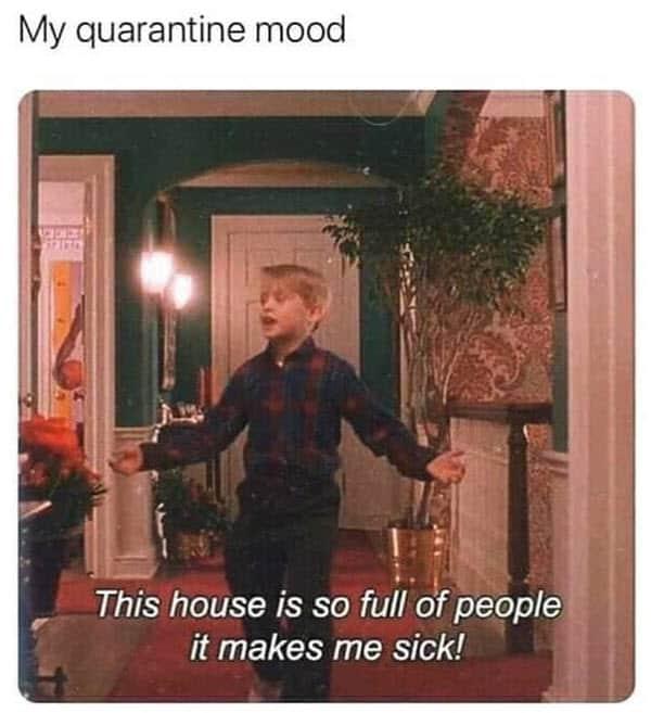 introvert quarantine mood meme